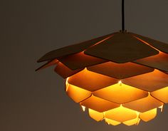 chrisbmarquez:  Ronny Buarøy brings us the Fire of Dragon Lamp...