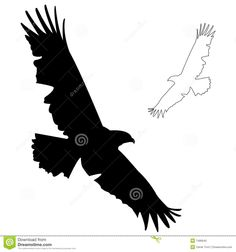Flying Hawk Silhouette Eagle silhouette