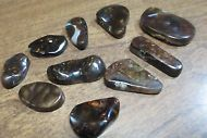 Free form MEXICAN Fire Agate ALL Natural  GEM Multicolored LOT of 10 stones