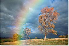 un arcoiris despues de la tespestad,