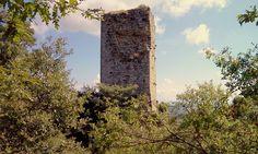 MARZANA, Monte Santa Maria tiberina (PG)