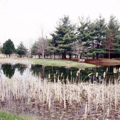 St. Clair campground