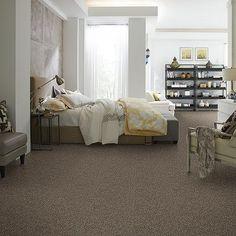 Velvet Night  Tuftex's Carpet Product Detail center stage i zz009 velvet night | Shaw's Premier Carpet Collections