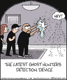 The latest ghost hunters detection device LOL Cat Jokes, Funny Animal Memes, Funny Animal Pictures, Funny Animals, Funny Memes, Animal Humor, Tumblr Funny, I Love Cats, Crazy Cats