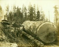 Washington State Historical Society - Loggers standing next to and sitting on large log on railroad car with donkey engine in background in unidentified area of Western Washington.