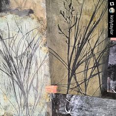 Nature inspired #monoprint by @kirilytaylor using a #gelliplate -detail is…