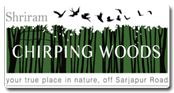 Shriram Chirping Woods where every home is exclusively designed with extra wide balconies and extraordinarily large windows to let nature freely into your homes. 8971315026-http://shriramchirpingwoods.propertytimesindia.com