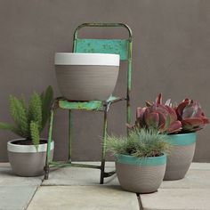 Camille Planters. west elm. Small. $13. Like gray and turquoise.