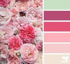 petalled pinks