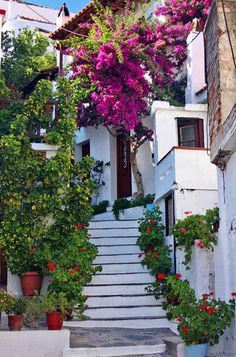 Stairs in Skopelos Town , Greece