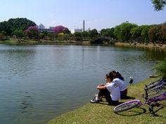 """Um passeio pelo Parque Ibirapuera é uma ótima opção para quem curte pista de cooper, parque infantil, quadras esportivas, viveiro, planetário, apreciar as exposições do Museu de Arte Moderna (MAM), do Museu Afro-Brasil e o Jardim das Esculturas e andar de bicicleta na ciclofaixa. No total são 1.584.000 metros quadrados de área verde. Fauna Foram...<br /><a class=""""more-link"""" href=""""https://catracalivre.com.br/geral/urbanidade/indicacao/visite-o-parque-ibirapuera/"""">Continue lendo »</a>"""