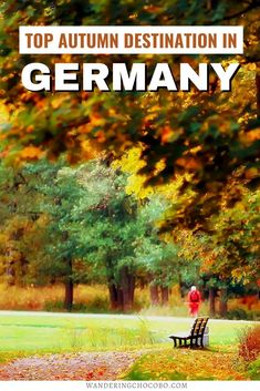 Discover the best Autumn Destination in Germany! I things to do in Germany I Germany travel I what to do in Germany I where to go in Germany I places to go in Germany I Germany outdoors I Germany in September I Germany in the fall I Germany travel I Germany destinations I Germany in October I what to do in Southern Germany I fall in Southern Germany I destinations in Germany I Germany in autumn I fall in Germany I Europe travel I autumn in Germany I holiday in Germany I #Germany #Europe