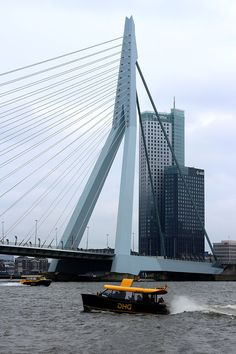 10 Day Trips from Amsterdam in Winter :: Rotterdam :: places to visit in the Netherlands in December, January and February. #amsterdam #rotterdam #daytrips #getaways #winter