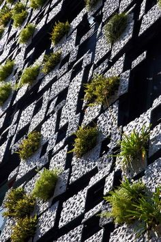 Kengo Kuma and Associates have designed a small building in Odawara, Japan, that has a facade covered in planters.