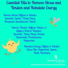 Essential Oils for Stress, Tension, and Reinstate Energy Order Oils: www.rooted2thrive.com/doterra Facebook Group: www.facebook.com/groups/rooted2thrive