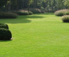 Landscape design by Kevin Mampay - Garten Landschaftsgestaltung Garden Landscape Design, Landscape Architecture, Modern Landscaping, Backyard Landscaping, English Garden Design, Cottage Grove, Big Plants, Garden Styles, Garden Inspiration