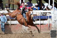Oakdale Rodeo In Oakdale California
