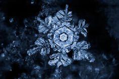 Ice of the Night II by FramedByNature on deviantART