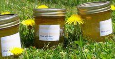 Dandelion Jelly Recipe - Food.com - 90601