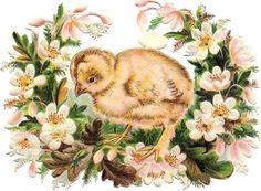 Oblaten Glanzbild scrap die cut chromo Ostern easter Küken chicken L & B ?