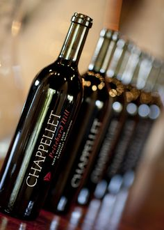 2009 Chappellet Pritchard Hill ~Gobs of luscious fruit, wet mtn dirt, cassis, chocolate & deep rooted herbs & spices. Plus, you gotta love the winery. $175