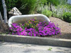 alte Badewanne gekippt und mit Blumen gepflanzt