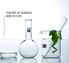 www.larimer.nl Cenzaa: The Art of Science & Nature