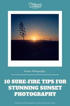 10 Sure-Fire Tips for Stunning Sunset Photography | A step-by-step plan for sunset photography at Photography Playground full of sunset photography tips for stunning sunset photos. It shares the best sunset photography settings, how to compose your sunset pictures, and best gear for sunset photography. #travelphotographytips #sunsetphotography #sunsetphotos #sunsetphototutorial #sunsetphotographytips Wildlife Photography Tips, Landscape Photography Tips, Photography Basics, Sunset Photography, Camera Photography, Photography Tutorials, Photography Ideas, Travel Photography, Photography Settings