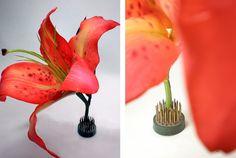 """single blooms - upright Ikebana Kenzan Pin Frogs 1.125"""" round (1-1/8"""" diameter)"""