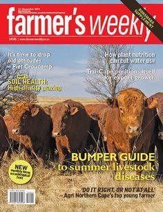 21 November - Bumper guide to summer livestock diseases. Agricultural Sector, Digital Magazine, Do It Right, Livestock, 21st, Positivity, November, Health, Windows 8