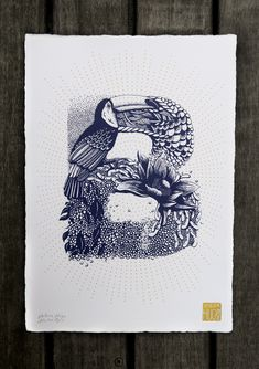 Typography - Alphabet Illustred by Valérie Hugo - Letter B