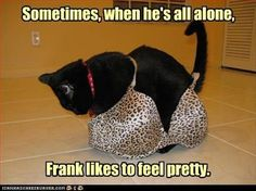 Sometimes, when he's all alone, Frank likes to feel pretty.