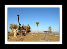 Tankwa Karoo National Park Nature Reserve, Continents, Conservation, South Africa, National Parks, Community, Explore, Country, Painting