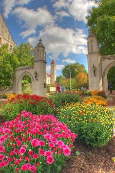 Indiana University ~home to the greatest college basketball team :)