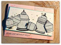 Builder Birdcage & G