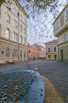 Palatul Dicasterial (1855-1860), Piața Țarcului cu vedere spre strada Eugeniu de Savoya, Timișoara