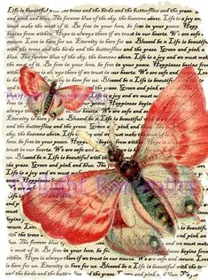 Dusky Pink Butterfly Vintage Art Print 12x8 FREE SHIPPING shabby chic