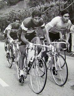 Giro d'Italia 1969. Da sin. Claudio Michelotto (1942), Felice Gimondi (1942) e Eddy Merckx (1945)