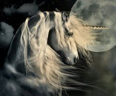 This is a stunning image of a beautiful Unicorn.