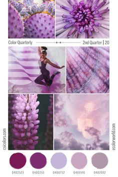 Color Quarterly - 2nd Quarter 2020 – eColorWorld Color Trends, Design Trends, Popular Colors, 2020 Design, Season Colors, Stitches, How To Find Out, Seasons, Purple