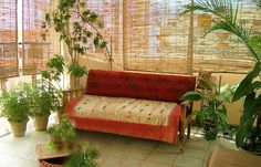balcony garden | cozy_bamboo_curtained_balcony_garden_lungspace_with_semi_indoor_plants ...