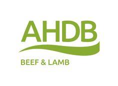 EBLEX cambia de marca y ahora es AHDB Beef and Lamb http://www.carnivorosgourmet.es/noticias.php?op=vernot&id_not=102 #gastronomía