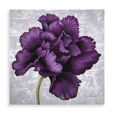 The plum-colored flower of this canvas wall art will add a nice touch of color to your decor. Art will be a welcomed addition to any wall. Measures 12 W x 12 L x 1 1/2 D.