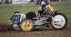 Image result for grasstrack sidecar racing