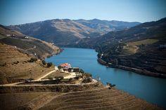 Douro River from Quinta do Crasto, Portugal by Melissa Toledo