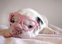 pink glasses