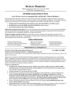 channel sales resume example - Resume Sample For Job