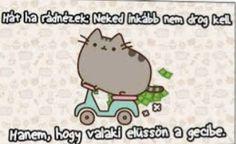 Pusheen Cat, Grumpy Cat, Funny Moments, True Stories, Funny Cats, Comedy, Jokes, Lol, Humor