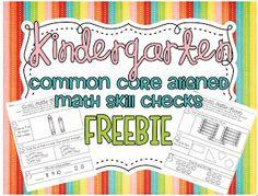 Common Core SUPER FREEBIE...22 common core aligned math skill checks {Kindergarten!}