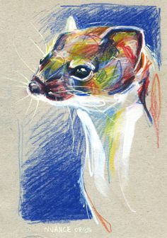Watercolor pencils and paint markers on paperboard. #weasel #art By Nuance (http://nuancescurieuses.tumblr.com/)